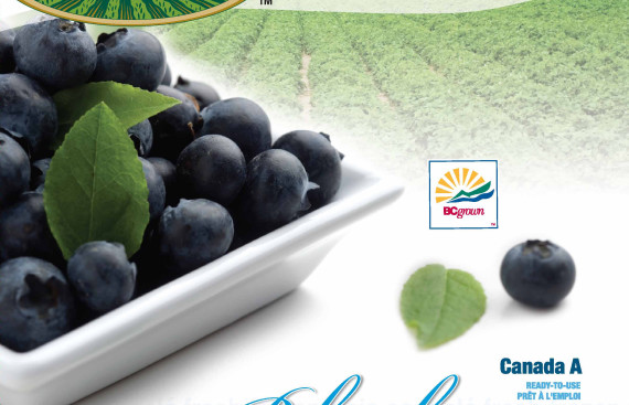 Snowcrest Foods: Blueberries