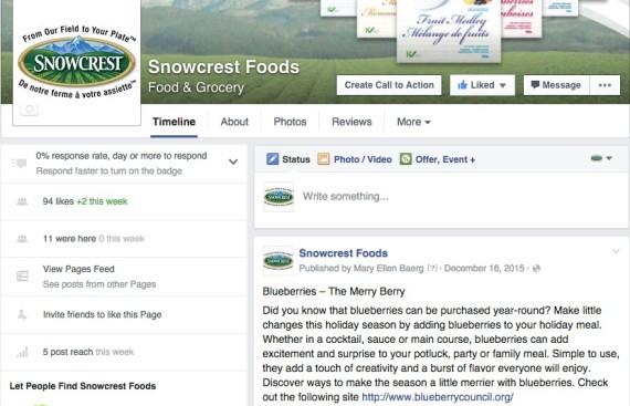 Snowcrest Foods: Social Media